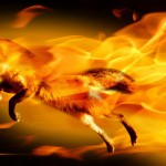 Burning-Firefox110404135202